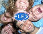 1 24 s25838498 1. flex, обмеженими можливостями