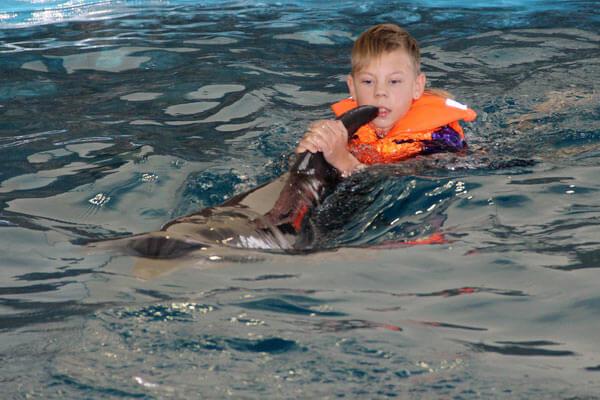 1 25 delfiny 4