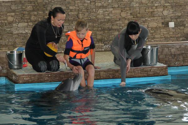 1 25 delfiny 2