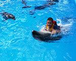 1 14 del11 2. дельфинотерапии, реабилитации