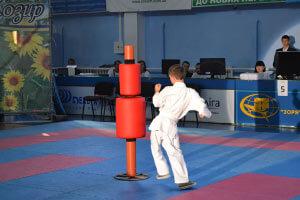 1 24 1 pri podderzhke borisa kozyrya v nikolaeve proshel turnir po karate i vystupila gruppa tanok na maydani kongo 11 1