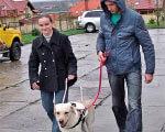 1 17 5 s419x0-news-14317145438 2. незрячих, реабілітації, собак-поводирів, інвалідів