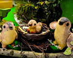 «Соловейко з одним крилом». тернопіль, адаптація, дитина-інвалід, мультфильм, особливими потребами, grass, animal, green, bird, toy. A green frog on a white background
