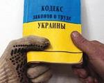 Трудовые права людей с инвалидностью. кзот украины, мсэк, инвалид, инвалидность, трудовые права, indoor, person, yellow, book, footwear