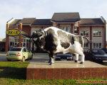 Відчувати себе потрібним та впевненим у завтрашньому дні – це – саме те, що потрібно кожній людині. світловодськ, працевлаштування, соціальна послуга, центр зайнятості, інвалідність, outdoor, grass, building, street, cow, road, statue, car, vehicle, land vehicle. A white cow walking down the street in front of a building
