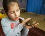 Ковельський центр соціальної реабілітації дбає про неповносправних діток. дцп, ковель, нервове захворювання, особливими потребами, центр соціальної реабілітації, toddler, child, baby, food, person