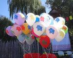 В Запорожье прошел первый фестиваль творчества для особенных людей (ФОТО). запорожье, инвалидность, ограниченными возможностями, особыми потребностями, фестиваль, tree, outdoor, sky, balloon. A group of colorful balloons