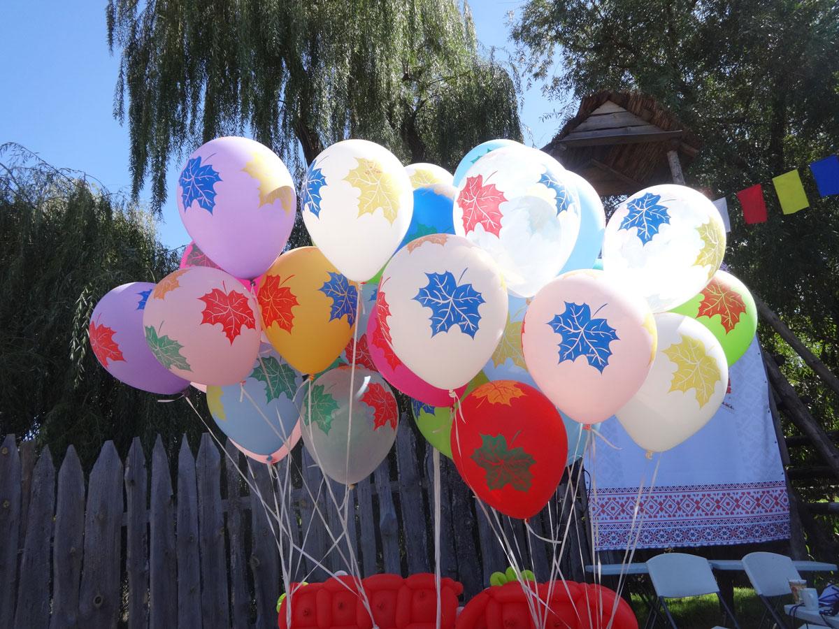В Запорожье прошел первый фестиваль творчества для особенных людей (ФОТО)