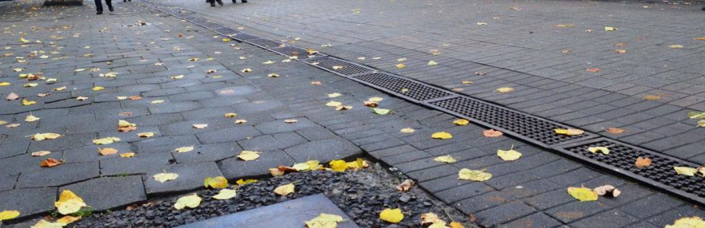 (Не)доступний Луцьк: чи справді місто зручне? (ВІДЕО). луцьк, вади зору, доступність, тактильна плитка, інвалідність, ground, sidewalk, way, scene, autumn, fall, street
