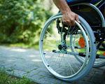 МОЗ звинуватили в бездіяльності по відношенню до людей з інвалідністю під час урядової Ради. моз, державна допомога, засідання, переселенец, інвалідність, bicycle, outdoor, tree, wheel, bicycle wheel, bike, land vehicle, person, tire, vehicle. A man riding on the back of a bicycle