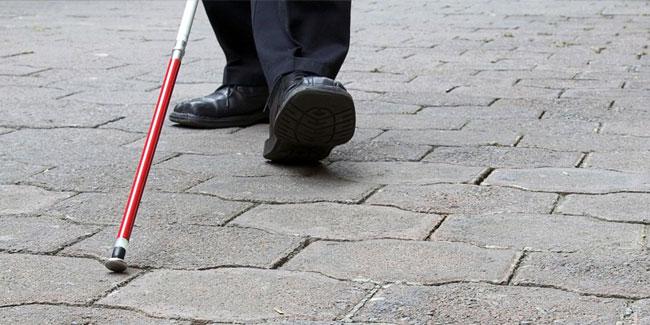 13 листопада – Міжнародний день сліпих