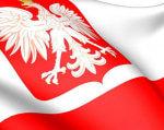 Польський досвід працевлаштування людей з інвалідністю. польща, квота, працевлаштування, соціальне підприємництво, інвалідність, design, cartoon, bird, carmine. A close up of a logo