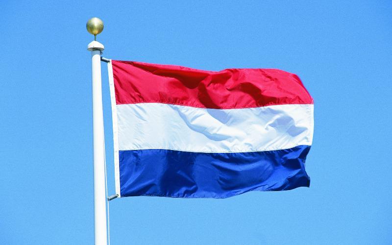 Досвід Нідерландів у працевлаштуванні людей з інвалідністю