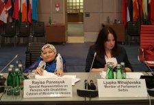 Вінничанка виступила у Відні на конференції ОБСЄ: як жінці з інвалідністю подолати внутрішні та зовнішні перепони. обсє, раїса панасюк, конференція, політика, інвалідність