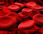 17 квітня — Всесвітній день боротьби з гемофілією. гемофілія, захворювання, згортання крові, порушення, хвороба, closeup, abstract. A close up of a red background