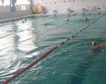 У Запоріжжі онкохворі жінки отримують реабілітаційну допомогу. запоріжжя, басейн, мастектомія, онкологія, інвалідність, water, sport, swimming pool, water sport, swimming, leisure centre. A group of people swimming in the water