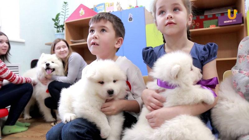 На Буковині відкрили реабілітаційний табір: дітей з ДЦП лікуватимуть за допомогою собак