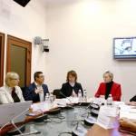 У Будинку Уряду відбулась експертна зустріч з питань забезпечення державної підтримки жестомовним особам