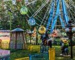 У Світловодську чоловік з інвалідністю став завідувачем атракціонів. світловодськ, завідувач атракціонів, працевлаштування, центр зайнятості, інвалідність, tree, outdoor, amusement ride, amusement park, ride, fair, area, playground. A person standing in front of a fence
