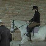 У селі Вишнів на Волині батьки дітей з інвалідністю самотужки облаштовують Центр з іпотерапії (ФОТО, ВІДЕО)