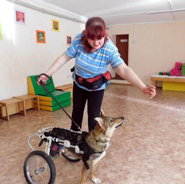 Когда у сына-аутиста начинается приступ агрессии, он подходит к любимому псу и успокаивается. полтава, аутизм, канистерапия, лечение, центр соняшник