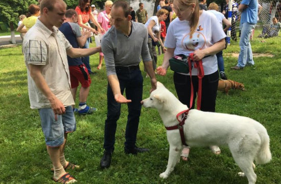 Собака як лікар: львівські чотирилапі допомагають у реабілітації людей (ФОТО)