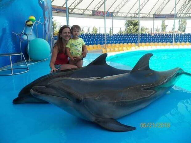 Скадовськ, дельфінарій Акварель. луцьк, відпочинок, море, прес-конференція, інвалідність