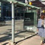 В Торонто установили автобусную остановку, в которую невозможно зайти (ФОТО)