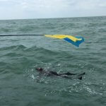 Український паралімпієць переплив Ла-Манш (ВІДЕО)