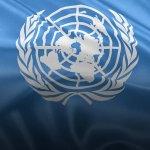 Боротьба триває: що нарешті почули в ООН щодо виконання в Україні Конвенції про права осіб з інвалідністю