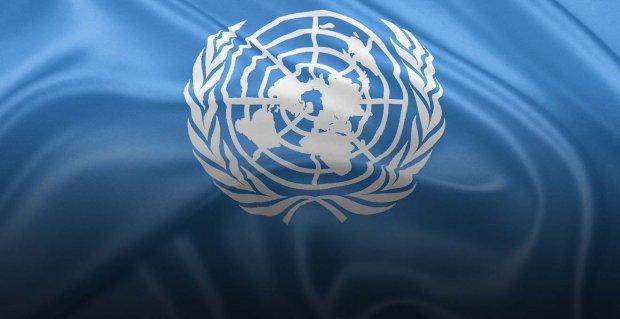 Боротьба триває: що нарешті почули в ООН щодо виконання в Україні Конвенції про права осіб з інвалідністю. доповідь, комитет оон, конвенція, суспільство, інвалідність