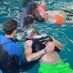 Світлина. Дельфінотерапія — ефективний метод реабілітації ветеранів війни. Реабілітація, ветеран, Одеса, волонтер, дельфінотерапія, інвалід АТО/ООС