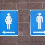 Жодна з громадських вбиралень у Чернівцях не є доступною для людей з інвалідністю