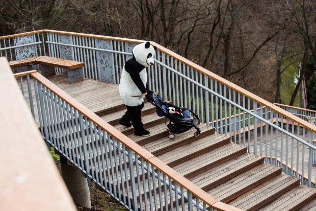 В Киеве панда тестирует пандусы: что известно о проекте. доступно.ua, киев, доступность, панда, пандус