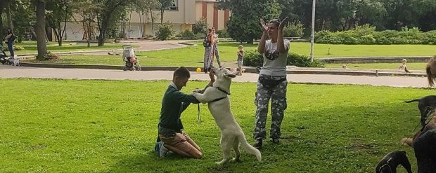 У Львові для дітей з інвалідністю проводять терапію із собаками. львів, канистерапия, лікування, собака, інвалідність
