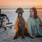 Світлина. Кофейня и терапия с животными: как в Одессе адаптируют молодежь с ментальной инвалидностью?. Новини, инвалидность, Одесса, канистерапия, фотопроект, кофейня