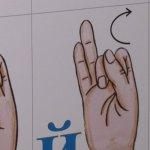 На Львівщині на майже 2500 людей із вадами слуху — 13 офіційних сурдоперекладачів (ФОТО, ВІДЕО)
