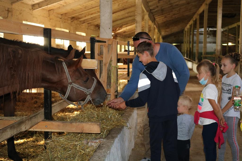 Іпотерапія та реабілітація з допомогою тварин відтепер доступні на Кременеччині (ФОТОРЕПОРТАЖ). кременеччина, діагноз, тварина, інвалідність, іпотерапія