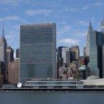 Українська ГО вперше отримала статус спостерігача при комітеті ООН із прав людей з інвалідністю (ВІДЕО)
