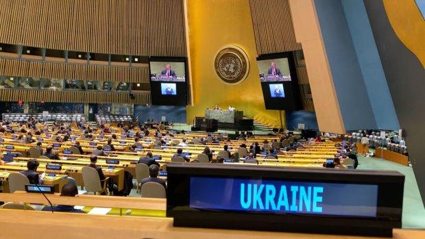 Українська ГО вперше отримала статус спостерігача при комітеті ООН із прав людей з інвалідністю. го боротьба за права, комитет оон, конвенція, спостерігач, інвалідність