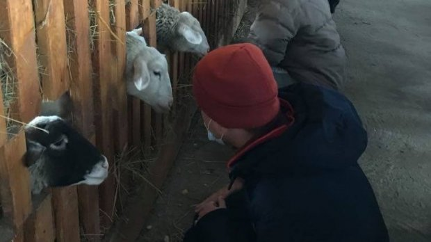 """""""Варимо 10 видів сиру"""". Священник на Львівщині відкрив сироварню та працює з людьми з інвалідністю. львівщина, священник, сироварня, ферма, інвалідність"""